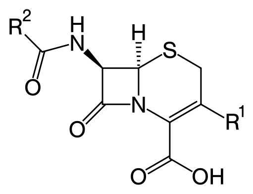"Cephalosporin core structure, where ""R"" is the variable group."