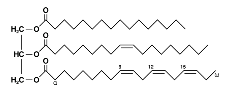 Unsaturated fat triglyceride. Left part: glycerol, right part from top to bottom: palmitic acid, oleic acid, alpha-linolenic acid.