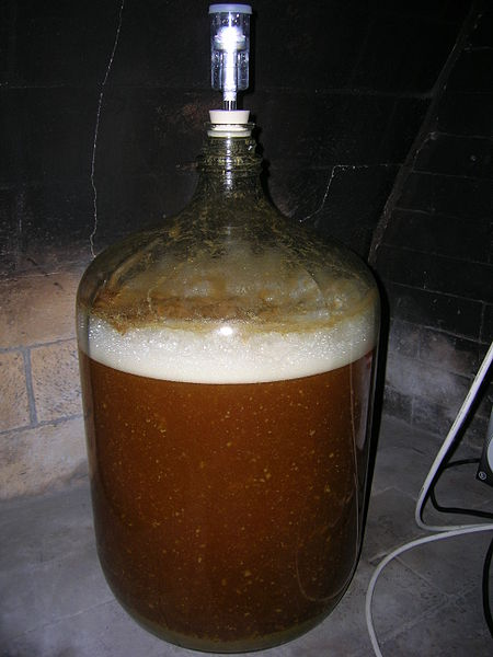 Yeast Fermenting Sugars and Generating Alcohol & CO2 Waste in Homebrew