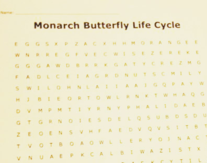 Microscopic Pond Life Word SearchWord Search