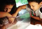 Kids Cleaning Planaria Flatworm Tank
